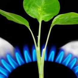 """""""Gas Natural, reconocida por su labor frente al cambio climático"""""""